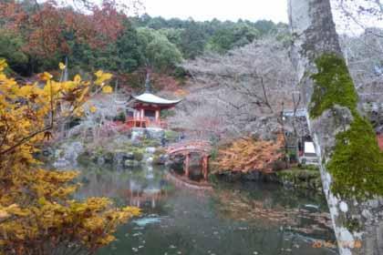 昨年秋、西国33寺の内10か所の寺を巡る